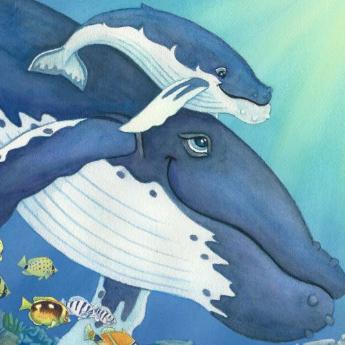 Whales and Sea Life